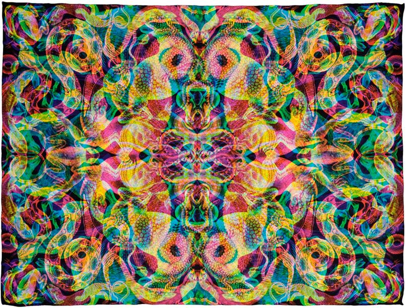 Silk scarf by Carnovsky