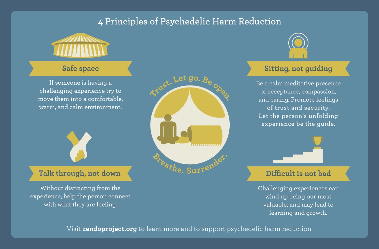 The 4 Principles of Psychedelic Harm Reduction