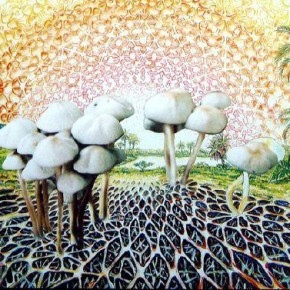 Scientists Unlock the Mystery of Magic Mushrooms, Allowing for Mass Production of Psilocybin